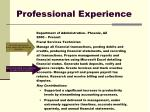 professional experience1