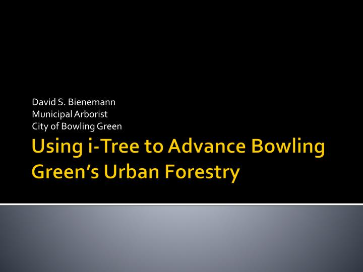 david s bienemann municipal arborist city of bowling green n.