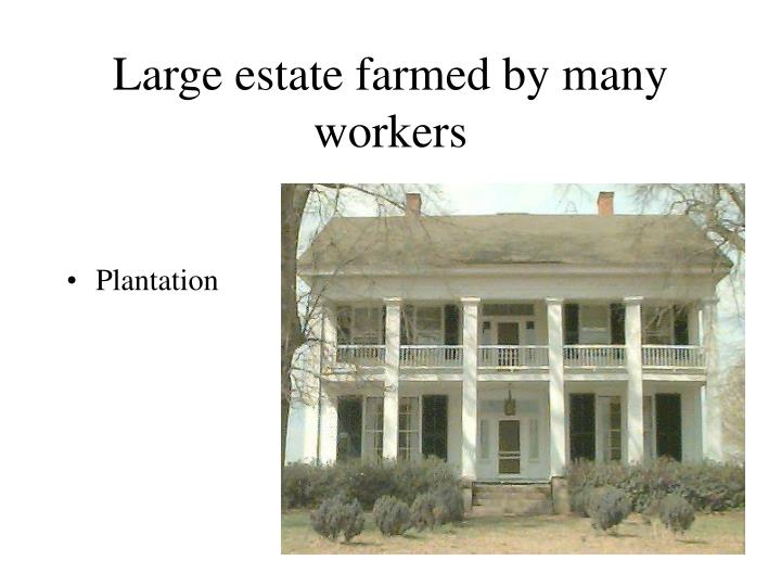 Large estate farmed by many workers