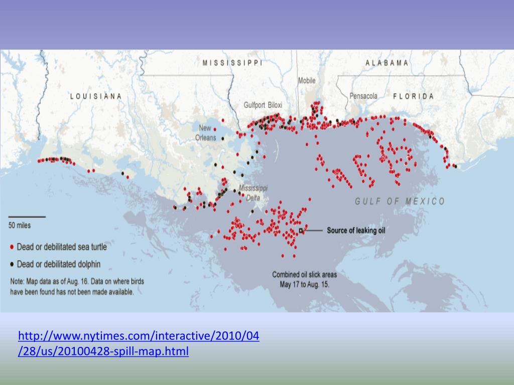 PPT - THE GULF OIL SPILL PowerPoint Presentation - ID:6596347