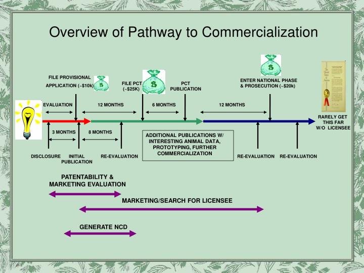 Overview of Pathway to Commercialization