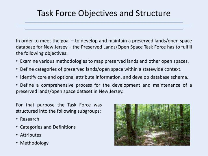 Task Force Objectives and Structure