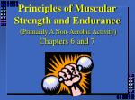 principles of muscular strength and endurance primarily a non aerobic activity chapters 6 and 7