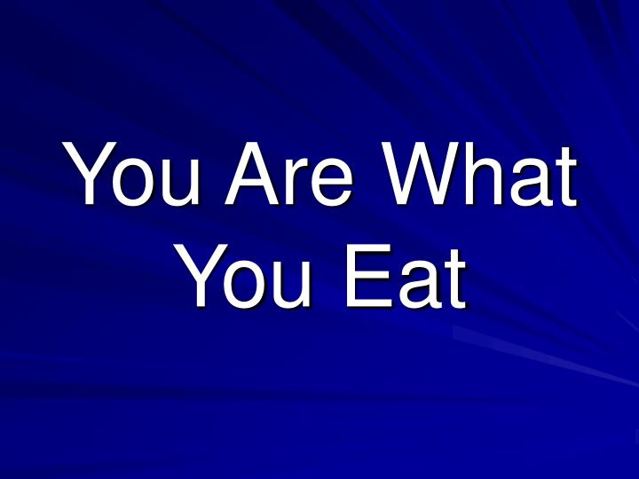 you are what you eat n.