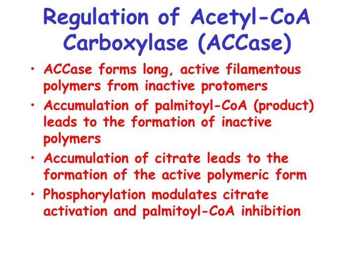 Regulation of Acetyl-CoA Carboxylase (ACCase)