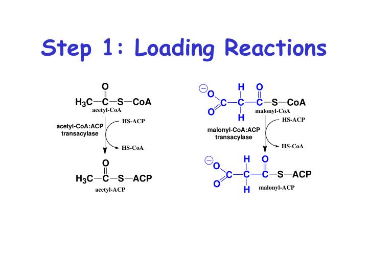 Step 1: Loading Reactions