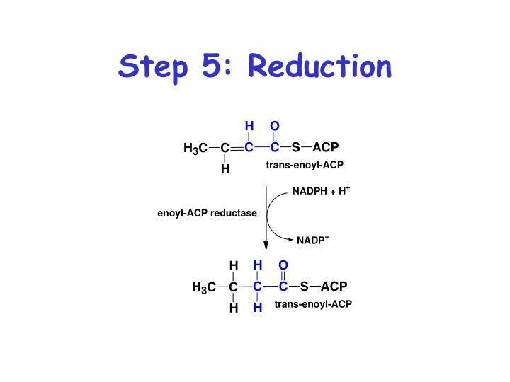 Step 5: Reduction