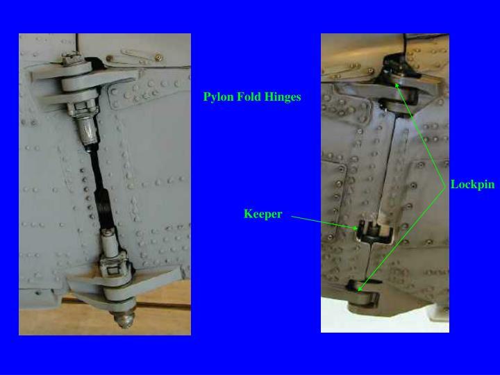 Pylon Fold Hinges