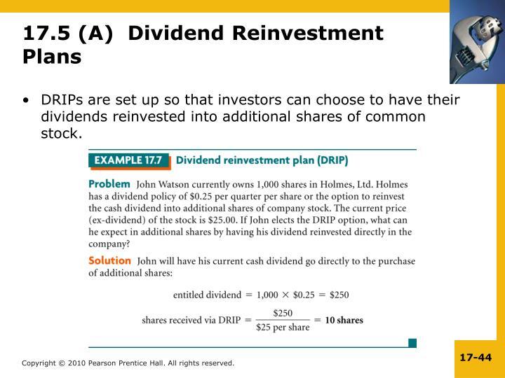 17.5 (A)  Dividend Reinvestment Plans