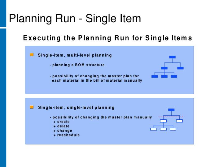 Planning Run - Single Item