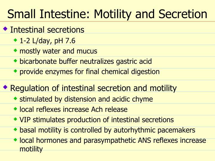 Small Intestine: Motility and Secretion