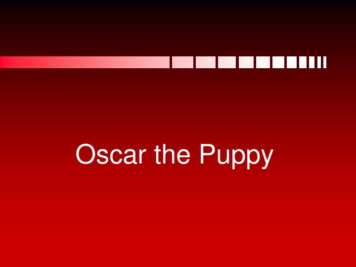 Oscar the Puppy