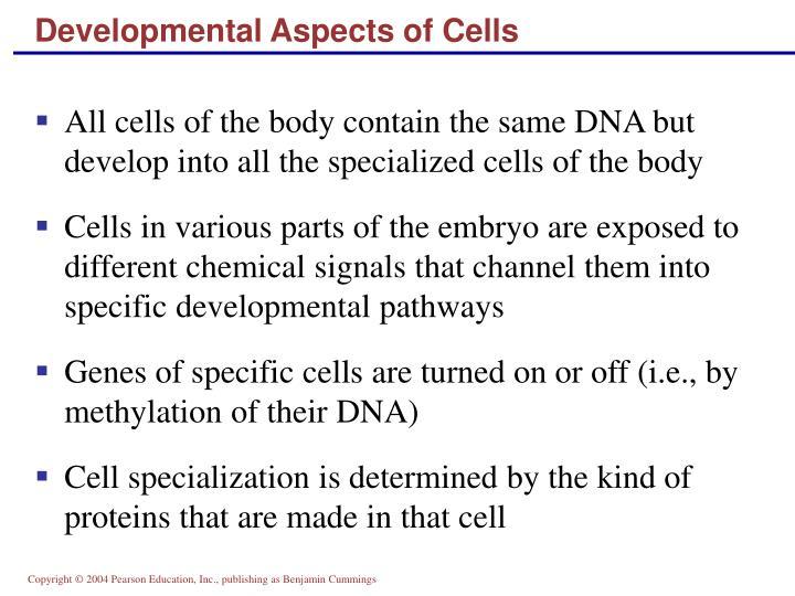 Developmental Aspects of Cells