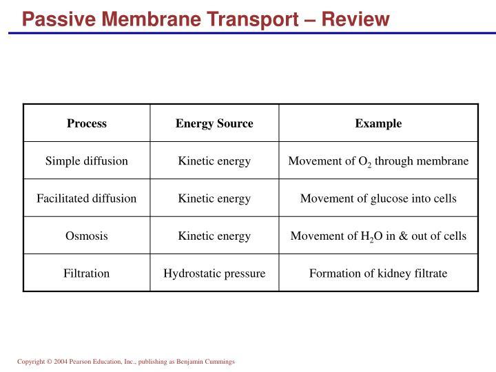 Passive Membrane Transport – Review