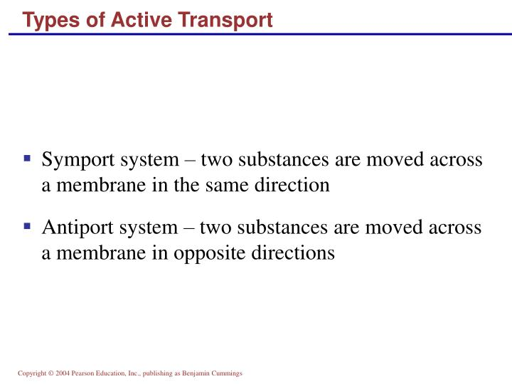 Types of Active Transport
