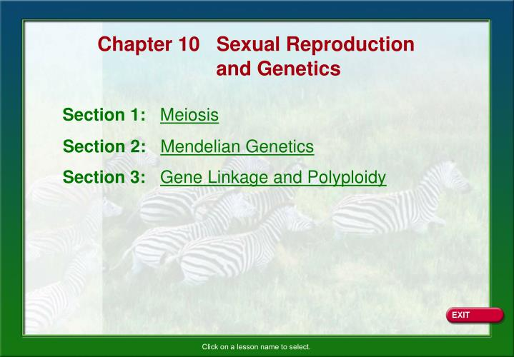 Chapter 10   Sexual Reproduction