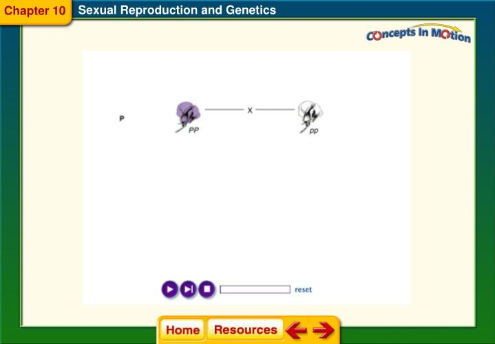 Sexual Reproduction and Genetics