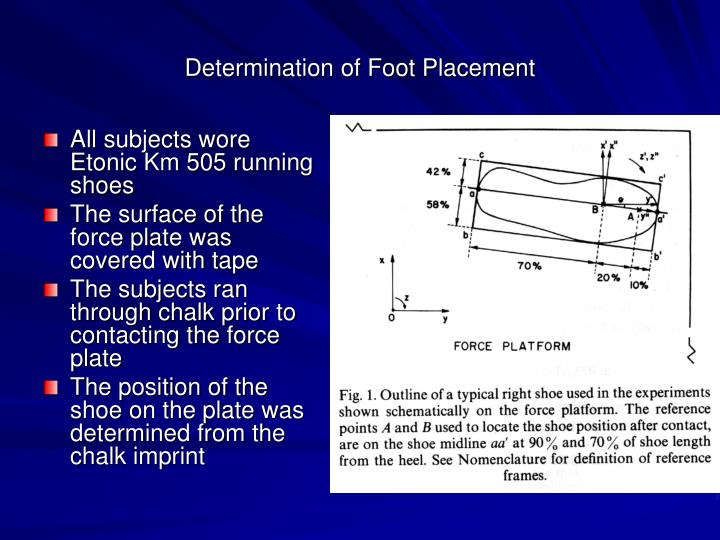 Determination of Foot Placement
