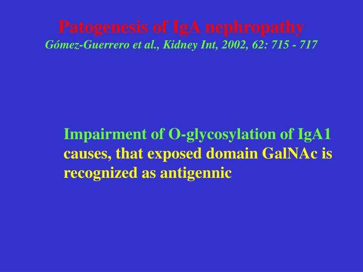 Patogenesis of IgA nephropathy