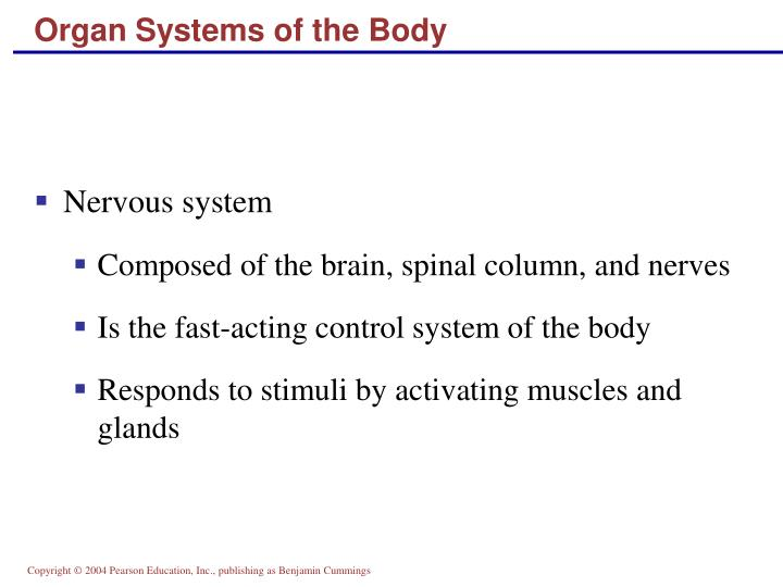 Organ Systems of the Body