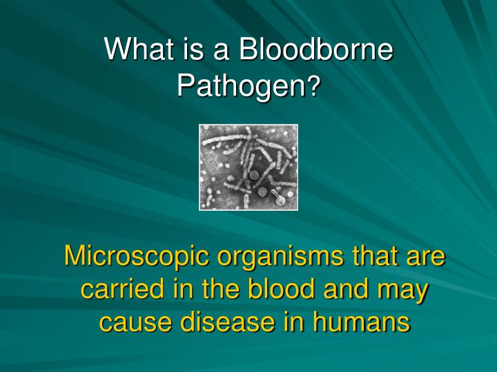 What is a Bloodborne