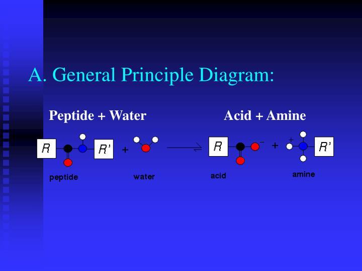 A. General Principle Diagram: