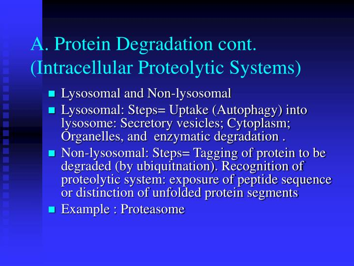 A. Protein Degradation cont. (Intracellular Proteolytic Systems)