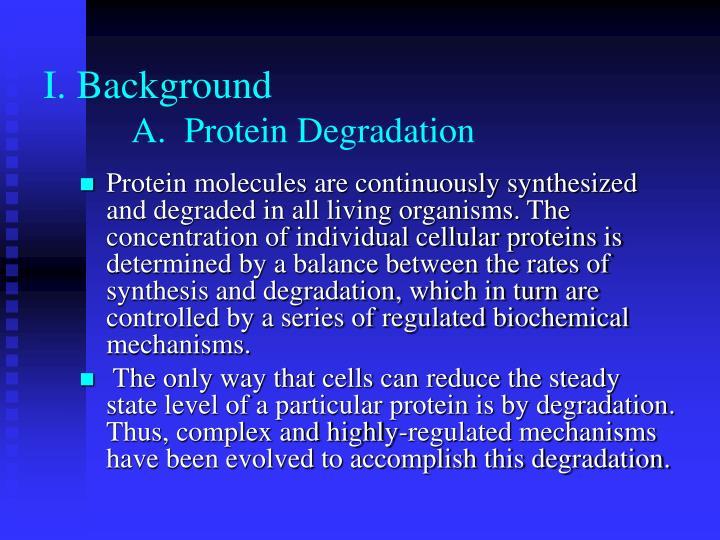 I background a protein degradation