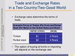 trade and exchange rates in a two country two good world