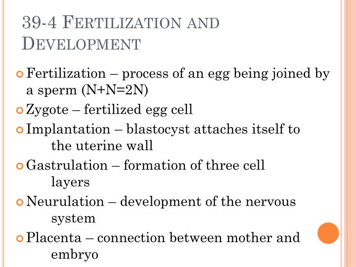 39-4 Fertilization and Development