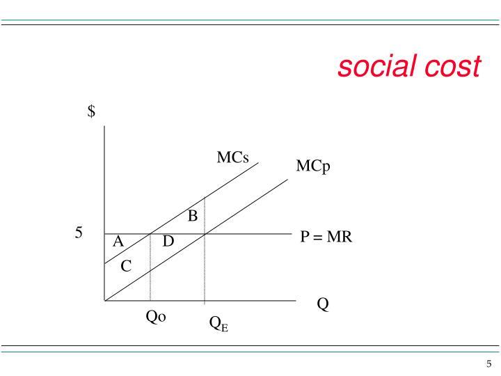 social cost