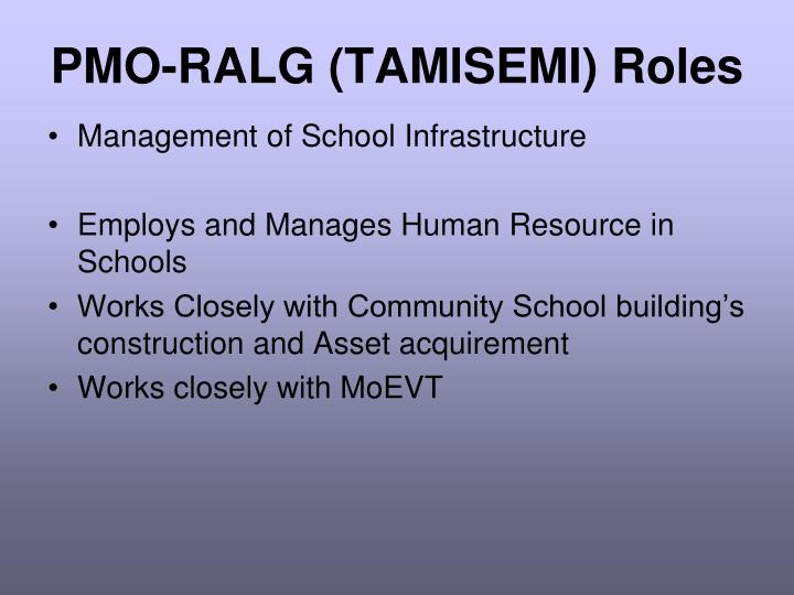 PMO-RALG (TAMISEMI) Roles