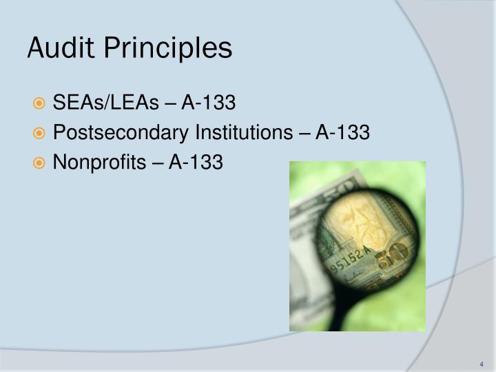Audit Principles