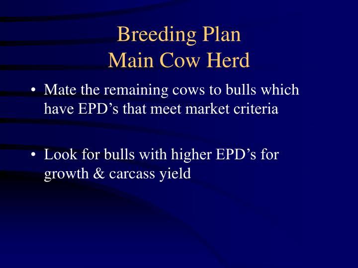 Breeding Plan