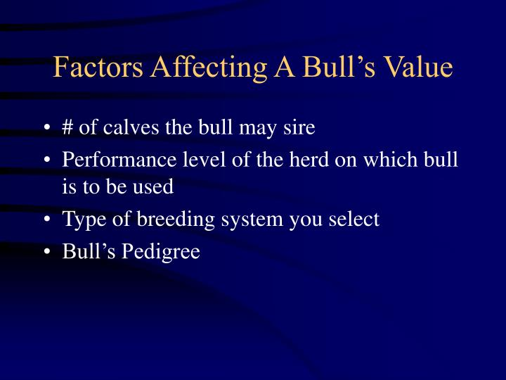 Factors Affecting A Bull's Value