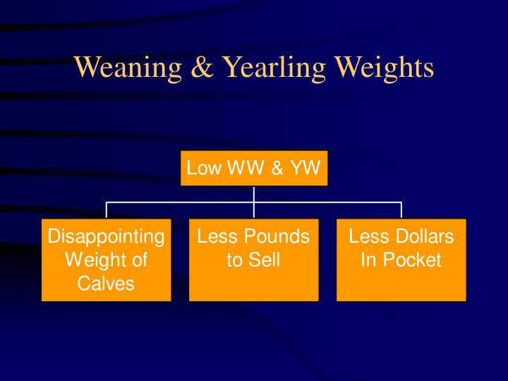 Weaning & Yearling Weights
