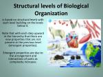 structural levels of biological organization