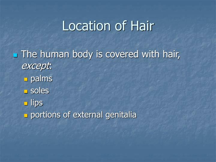 Location of Hair