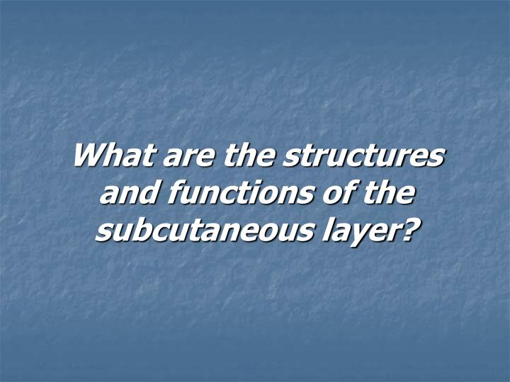 What are the structures