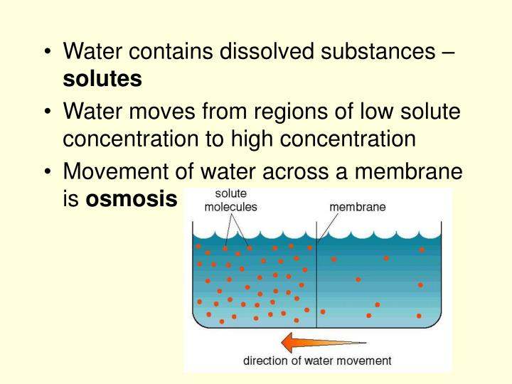 Water contains dissolved substances –