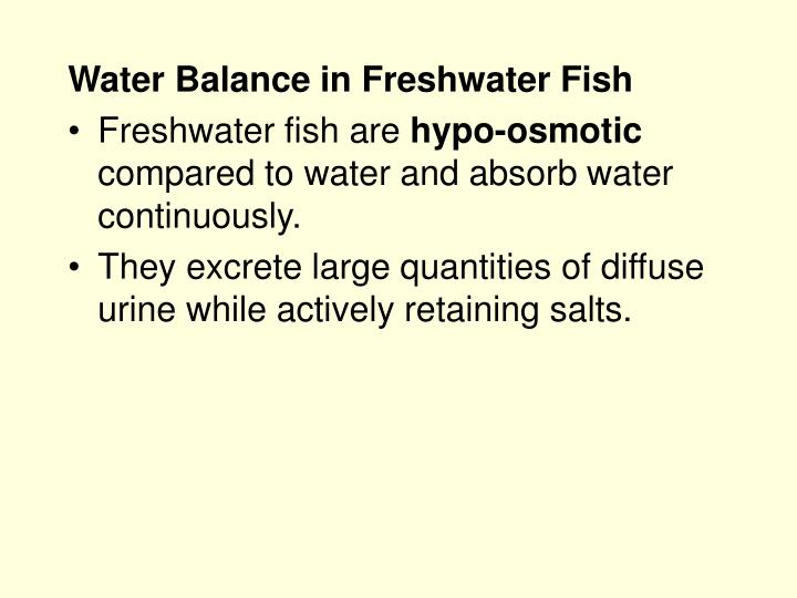 Water Balance in Freshwater Fish