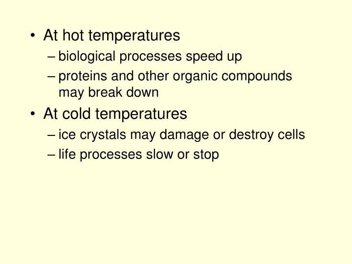 At hot temperatures