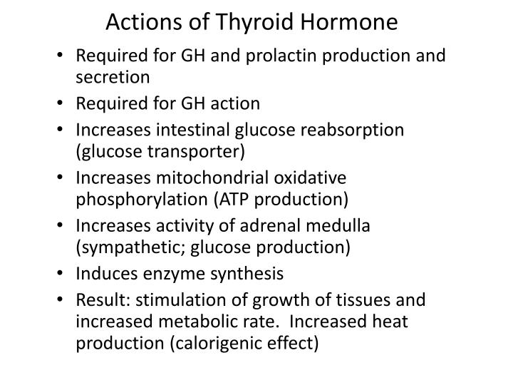 Actions of Thyroid Hormone