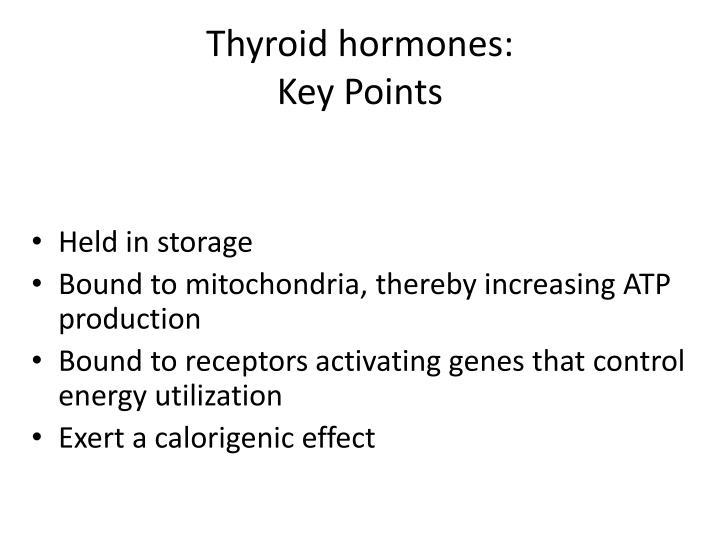 Thyroid hormones: