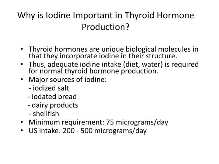 Why is Iodine Important in Thyroid Hormone Production?