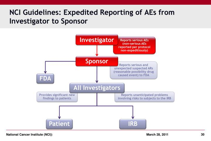 NCI Guidelines: Expedited Reporting of AEs from Investigator to Sponsor