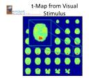 t map from visual stimulus