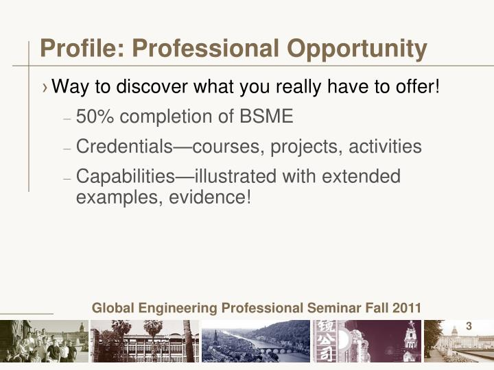 Profile professional opportunity