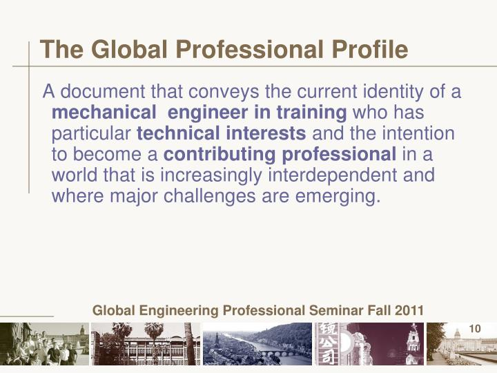 The Global Professional Profile