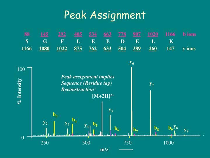Peak Assignment